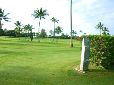 Hawaii1014a